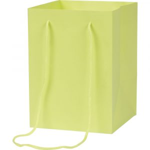 Florist Sundries & Craft Supplies - Tall Pistachio Green Gift Bag