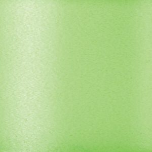 Trade Only Florist Sundries and Wholesale Supplies - 91.4m reel of 50mm Fresh Lime Ideal Poly Ribbon