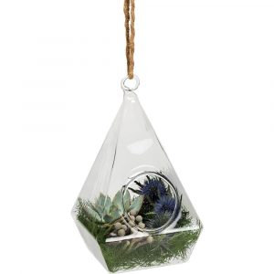 Florist Sundries and Wedding Supplies - Bird Box Glass Pyramid Pendant