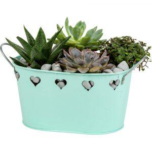 Florist Sundries and Craft Supplies - Green Loving Metal Planter