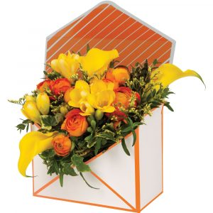 Trade Only Christmas Florist Sundries and Wholesale Supplies - Envelope Gift Box in White & Orange