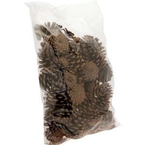 Trade Only Christmas Florist Sundries and Wholesale Supplies - Natural Pine Cones