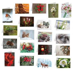 Trade Only Christmas Florist Sundries and Wholesale Supplies - Christmas & Winter Folded Message Card Selection